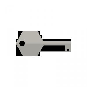 custom-icon-key